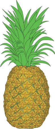 Pineapple Illustration Stock fotó - 83996326