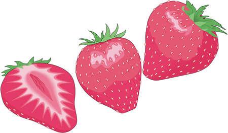 Strawberries Illustration Illusztráció