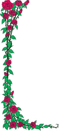 Roses Border Illustration Ilustrace