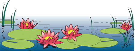 Water Lilies Border Illustration