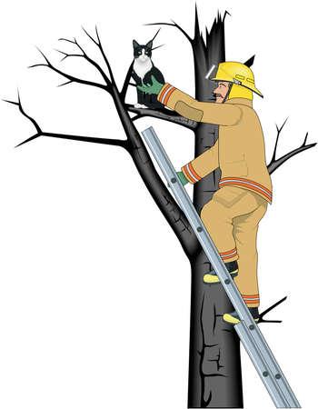Firefighter Rescuing Cat Illustration Illustration