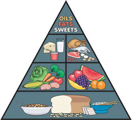 Food Pyramid Illustration