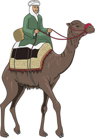 Arab Riding Camel Illustration.