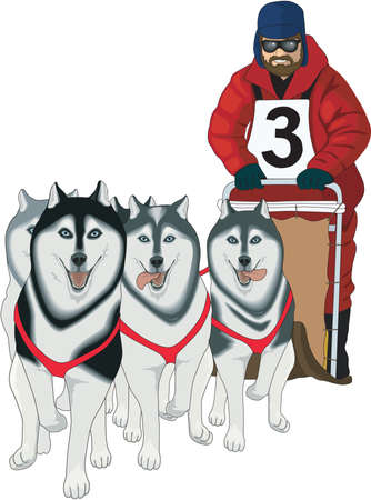 Dog Sled Racing Illustration Illusztráció