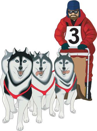 Dog Sled Racing Illustration Vettoriali