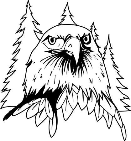 Eagle face illustration. Illustration