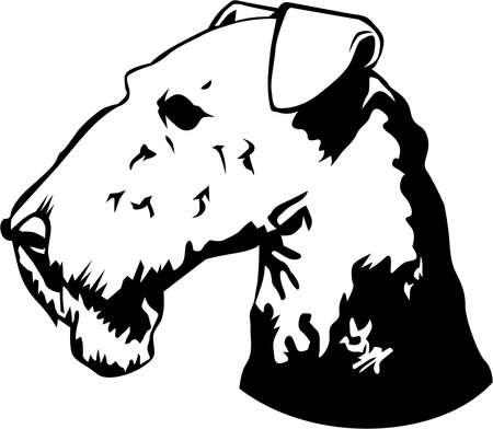 Airedale Terrier Illustration. Çizim