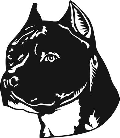 A pitbull Illustration also known as American Staffordshire Terrier.