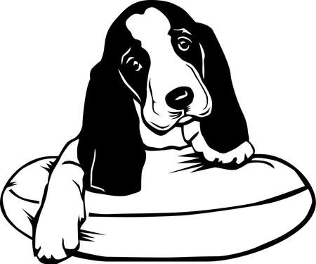 Basset Hound Puppy Illustration.