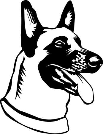Belgian Malinois Illustration.