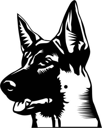 German Shepherd Illustration. Çizim