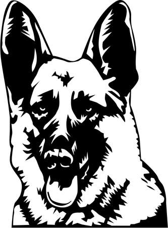 German Shepherd Illustration. Çizim