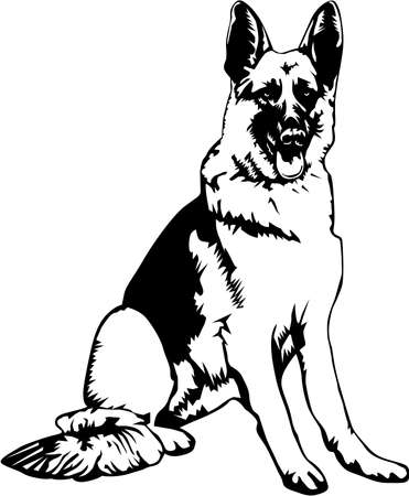 German Shepherd Illustration. Vettoriali