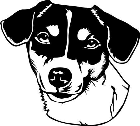 A jack russell terrier Illustration.