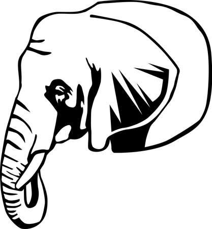 Elephant Illustration.