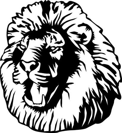 Lion Illustration Иллюстрация