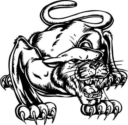 Cougar Illustration