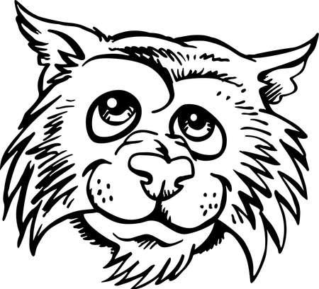 Casual Wildcat Head Cartoon. Ilustração