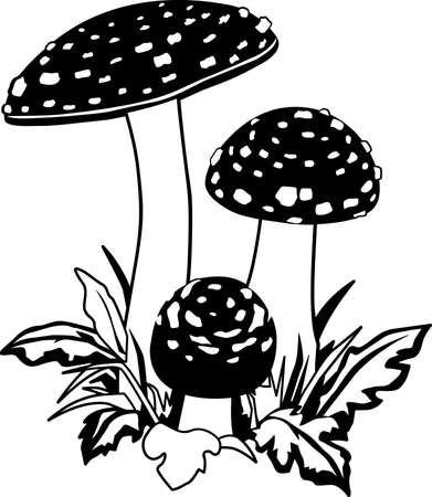 Mushrooms Illustration 版權商用圖片