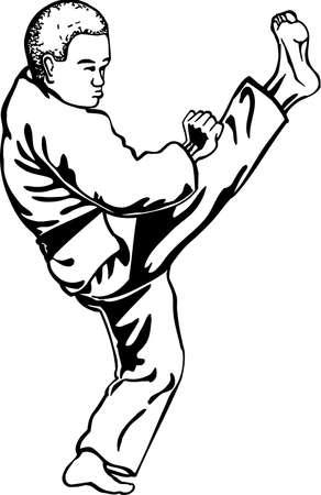 Karate Illustration. Ilustração