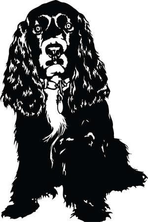 Cocker Spaniel Illustration Reklamní fotografie - 87516500