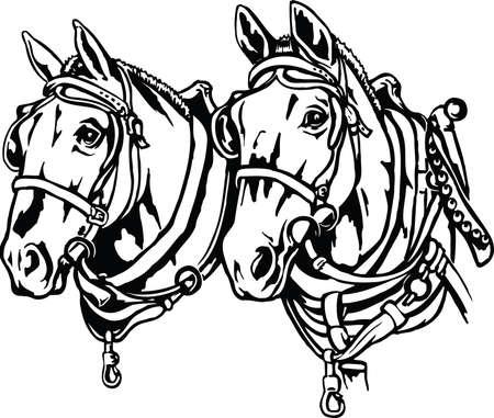 Entwurf Pferde Abbildung Vektorgrafik