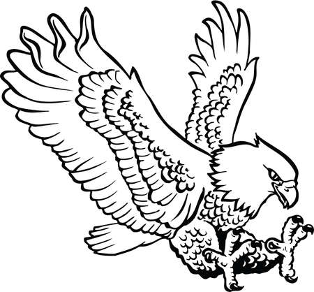 Eagle Landing Illustration