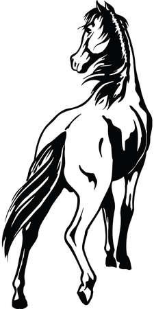 Horse Illustration Çizim