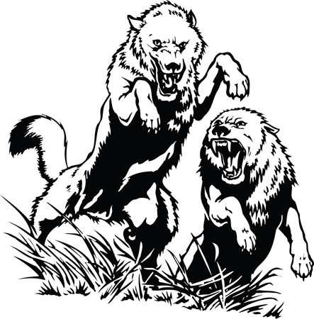 Twee Wolven Illustratie