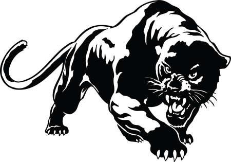 Panther Illustratie Stock Illustratie