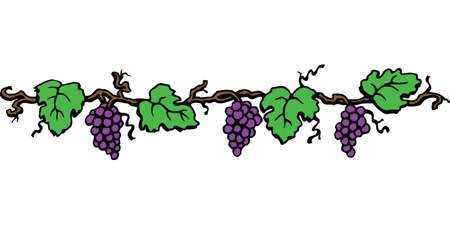 Grape border illustration on white background.