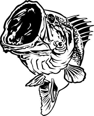 Large Mouth Bass Jumping Vector Illustration