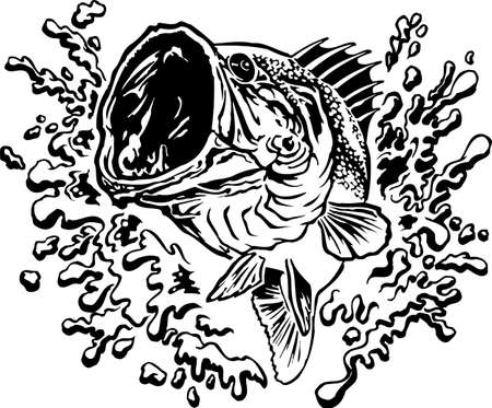 Large Mouth Bass Jumping with Splash Vector Illustration