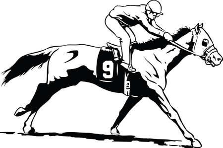 Race Horse Vector Illustration