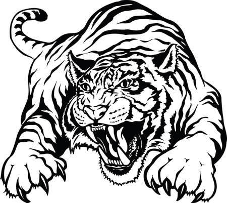Angry Tiger Vector Illustration