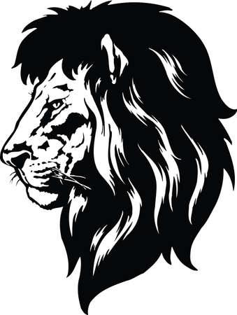 Lion Head Vector Illustration Çizim