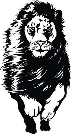 Lion Running Vector Illustration Vektorové ilustrace