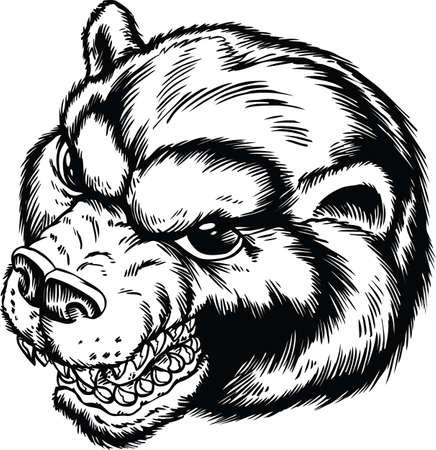 Bear Head Cartoon Vector Illustration