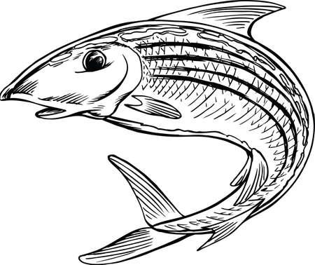 Bonefish Jumping Cartoon Vector Illustration Banque d'images - 139799358