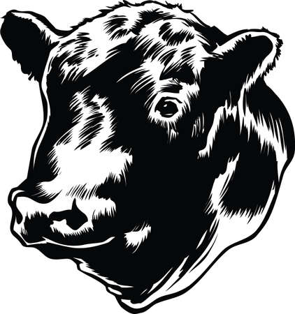 Bull Head Vector Illustration Banque d'images - 139734761