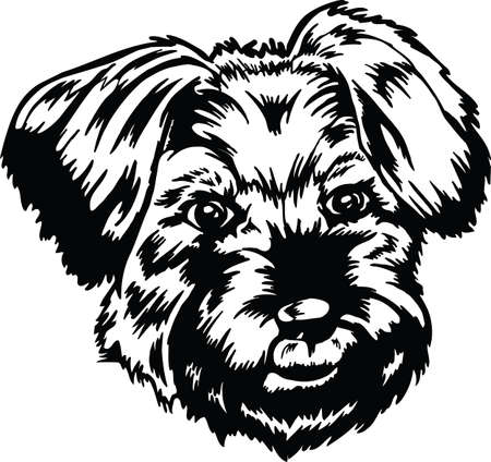 Little Dog Head Vector Illustration Banque d'images - 139799363