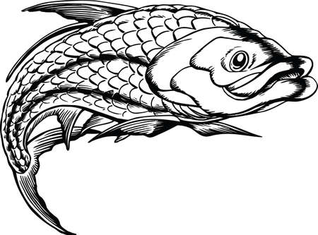 Tarpon Jumping Vector Illustration Banque d'images - 140410890