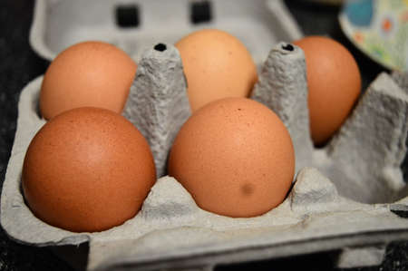 egg carton: Five brown eggs in an egg carton