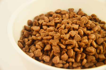 cat food: Dry Cat Food