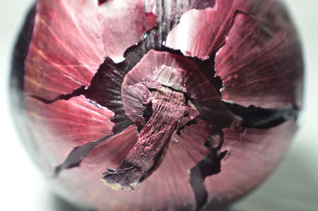 spanish onion: Red Onion Bulb