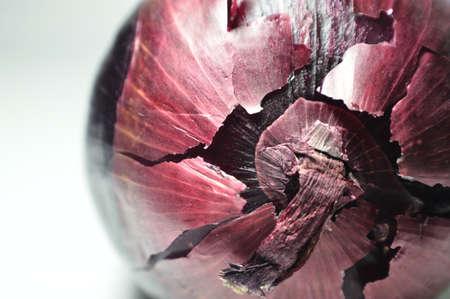 cebolla roja: Bulbo de la cebolla roja Foto de archivo