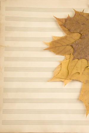 Academic year at music school