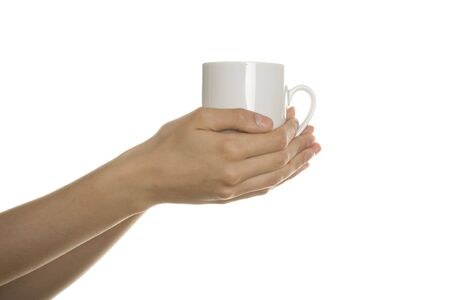 White cup in the female hands Stock Photo
