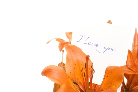 Flowers with a card with the text I Love You Stock Photo - 9329207