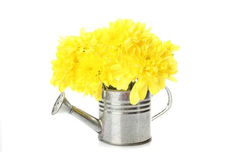Watering can with yellow flowers photo